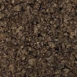 GrupoB-aglomeradonegro-nunocorreia-2