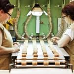 GrupoB-industria-nunocorreia-fabricasnorte-69