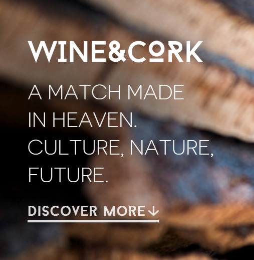 Wine&Cork Brochure