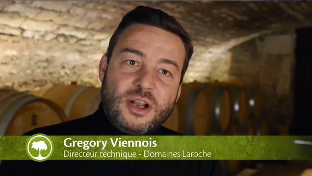 Laroche Chablis | Gregory Viennois