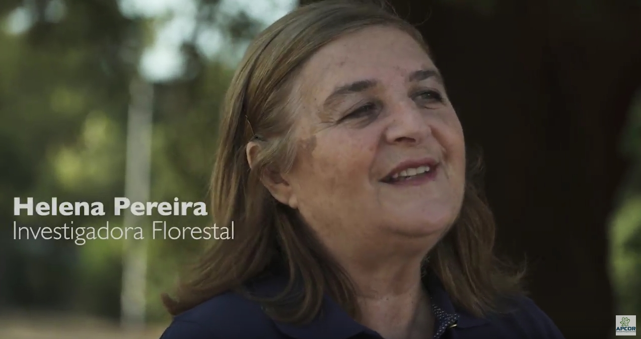 Helena Pereira – Forest Researcher