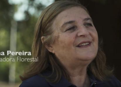 Helena Pereira – Investigadora Florestal