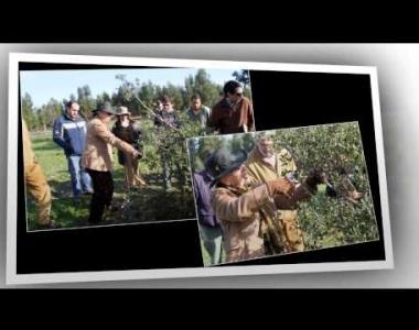 Gala Anual da Cortiça | Prémio Floresta | ACHAR