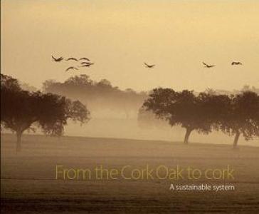 From Cork Oak to Cork