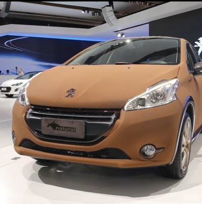 Peugeout 208 Natural